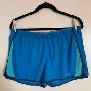 Patagonia Blue Strider Shorts